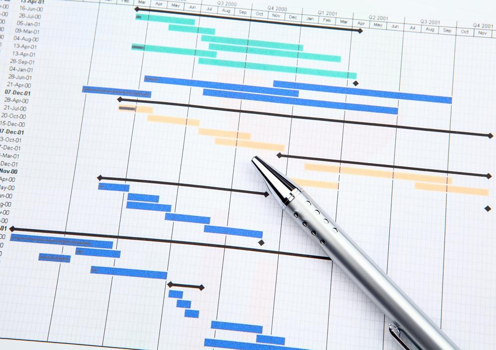 SAP Dealer Portal Implementation Methodology